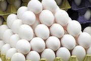 ببینید | جنگ تخممرغی در فروشگاههای تل آویو به خاطر کرونا!
