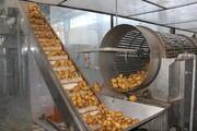 ظرفیت فرآوری محصولات کشاورزی چهارمحال و بختیاری ۵۰ هزار تن افزایش می یابد
