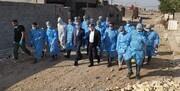 سازمان بهداشت جهانی خبر رویترز درباره عراق را تکذیب کرد