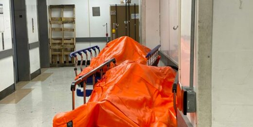 ببینید  تصاویری آزاردهنده از اجساد کرونایی در نیویورک
