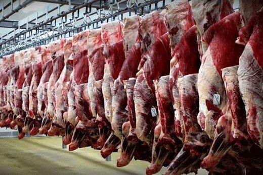 مازاد تولید گوشت گوساله قیمت آن را کاهش داده است؟