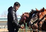 یک زن مربی اسب سردار شد/عکس