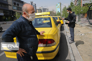 مدیر عامل اتحادیه تاکسیرانیها: تاکسیها باید حداکثر ۳ مسافر سوار کنند