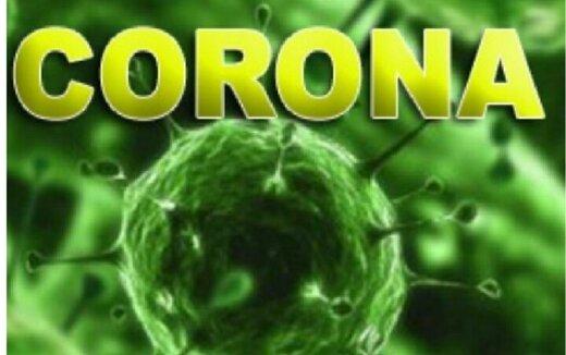 کاهش بیماری کرونا در کهگیلویه و بویراحمد