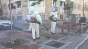 معاون خدمات شهری شهرداری: معابر شهر همدان با استفاده از ۲ میلیون لیتر محلول ضدعفونی شد