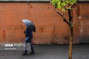 ببینید | بارش باران بهاری در تهران