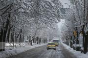 ببینید | بارش برف بهاری اینگونه تهرانیها را غافلگیر کرد