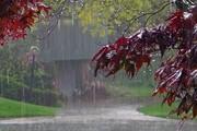 یک استاد هواشناسی: وارد دوره ترسالی شدهایم