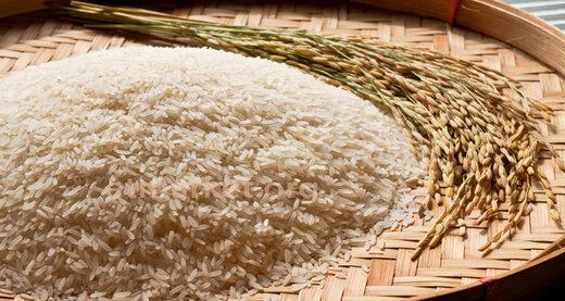 ۴ نکته که هنگام خرید برنج باید بدانید