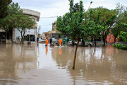 ببینید | میدان تاریخی کرمان غرق شد