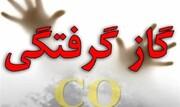 فوت ۷ نفر در ۴۸ ساعت گذشته به دلیل گازگرفتگی
