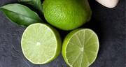 صادرات لیمو و کش قیطانی تا پایان اردیبهشت ممنوع شد