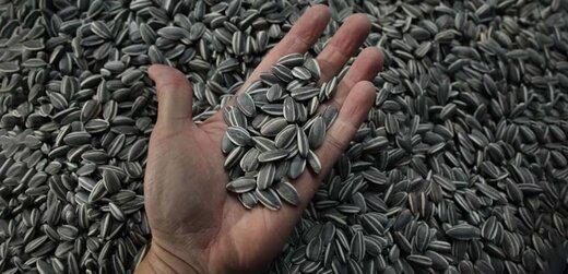محموله میلیاردی تخمه خارجی قاچاق در شاهرود توقیف شد