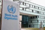 توصیههای سازمان بهداشت جهانی به روزهداران