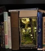 قفسه های کتاب یا ورود به سرزمین عجایب! +تصاویر