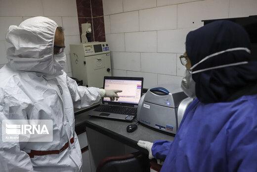 آخرین اخبار از درمان کرونا با داروی فاویپیراویر
