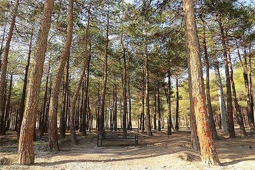 این ۴ بوستان جنگلی تهران تا ١۵ اردیبهشت تعطیلاند