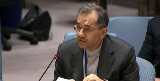 Envoy terms Iranian origin of arms as fallacy