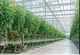 تاثیر مثبت کرونا برای محیط زیست؛ برای حفظ طبیعت باید سبک زندگی تغییر کند