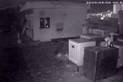 ببینید    لحظه ثبت زلزله تهران توسط دوربین مخفی