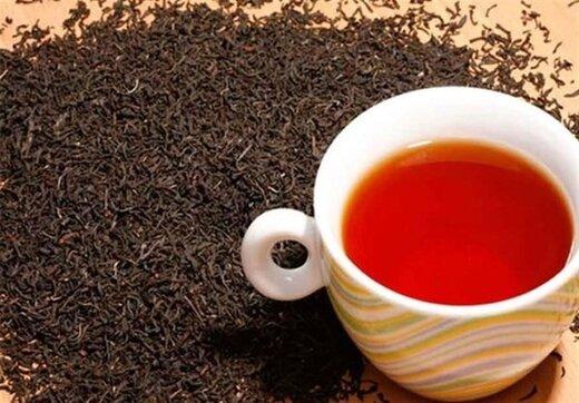 چرا ۴۰۰ میلیون دلار ارز برای واردات چای اختصاص یافت؟