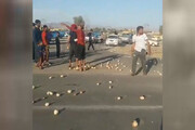 ببینید | عصبانیت کشاورزان کرمانی از دلالهایی که محصولشان را کیلیویی 200 تومان خریدند
