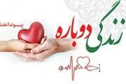 چند نفر از ایرانیان کارت اهدای عضو دارند؟