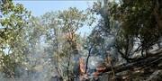 ادامه تلاش برای مهار آتش در ارتفاعات گچساران مراتع و جنگلهای این منطقه