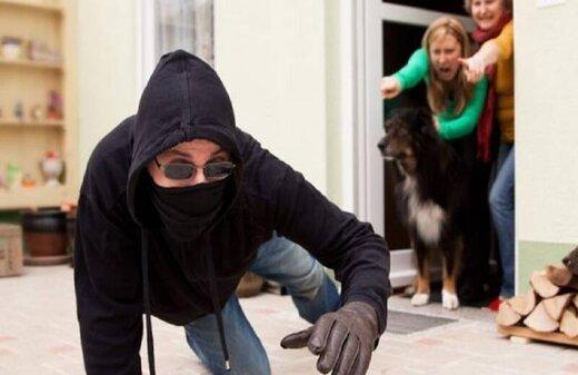 اجازه داریم دزدی را که وارد خانه شده کتک بزنیم؟ / 4 شرط دفاع مشروع را بشناسیم