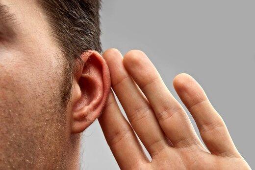 10 دشمن عجیب گوشها را بشناسید