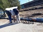 دستگیری شکارچیان غیرمجاز در ۲ شهر مازندران
