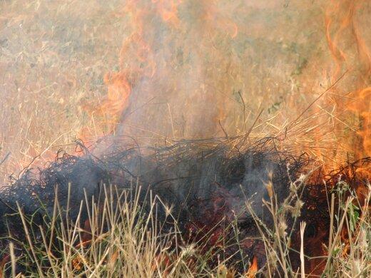 کشاورزان از آتش زدن در مزارع کشاورزی خودداری کنند