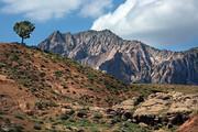 تصاویر | زیبا مثل مهراب کوه لرستان!