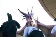 ببینید | ورژن جدید بارش بادمجان از برج میلاد، اینبار شکار اژدها!