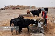 محاسبه تعرفه آزاد آب برای مصرف دام در روستاهای خراسان شمالی
