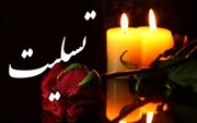 فتح الله فتحی روزنامه نگار برجسته رزمی نویس دار فانی را وداع گفت