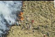 آتش در بلوطستان با دستان خالی مهار نمیشود