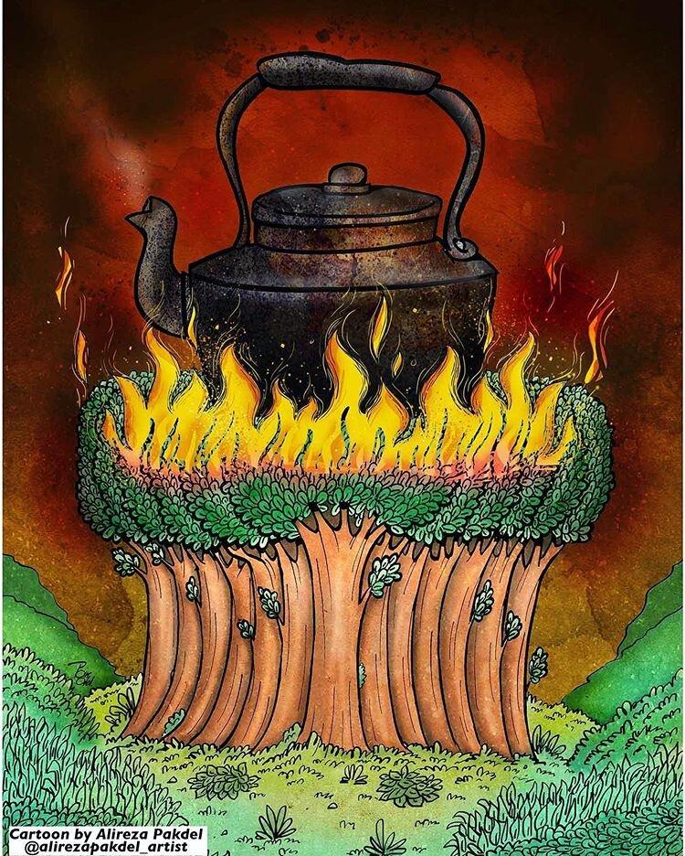 عامل آتشسوزی جنگلهای زاگرس را ببینید!