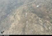 وزش باد و افزایش آتشسوزی در جنگلهای خاییز/ تصاویر