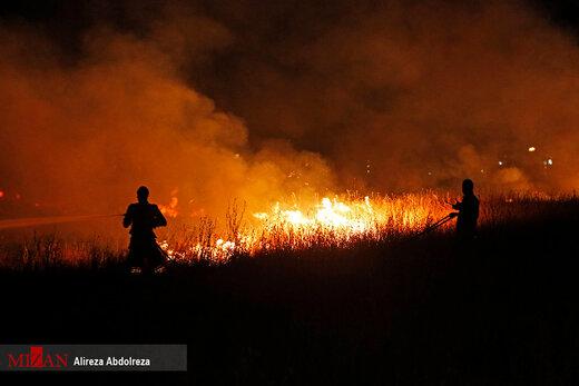 آتش سوزی در بوستان ولایت - تهران