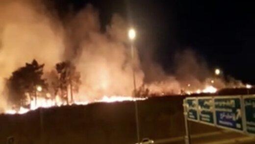 ببینید | پارک چیتگر تهران در آتش سوخت