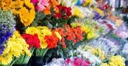 سقوط تقاضا برای خرید گل در بازار