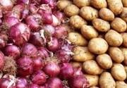 چهار هزار و ۱۰۰ تن سیب زمینی و پیاز در شوشتر برداشت شد