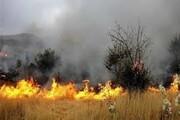 آتش سوزی در پارک جزیره شوشتر