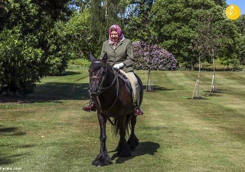 ملکه انگلیس سوار اسب از قرنطینه خارج شد / عکس
