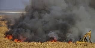 مدیرکل محیط زیست گلستان: امسال با بحران حریق مواجه میشویم