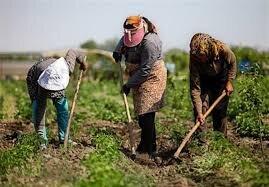 روستاهای خراسانشمالی؛ حکایت سرزمینهایی تولیدکننده که «آب و نان» ندارند