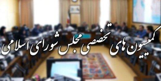 جدیدترین لیست از اعضای کمیسیونهای تخصصی مجلس یازدهم/حضور پررنگ پایداری ها در کمیسیون فرهنگی/کمیسیون قضایی ۲ عضو دارد