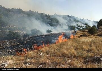 وقوع ۲۴۰ مورد آتشسوزی در جنگلها و مراتع کشور در ۷۴ روز گذشته