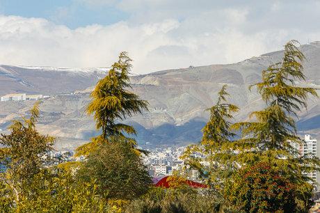 امروز هوای تهران سالم است